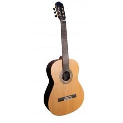 گیتار رویال
